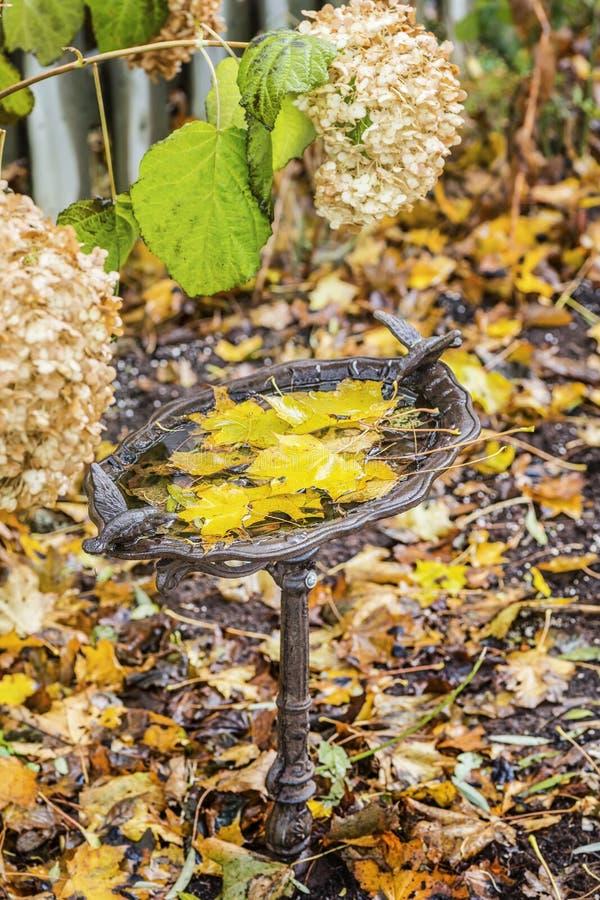 Autumn Birdbath fotografía de archivo