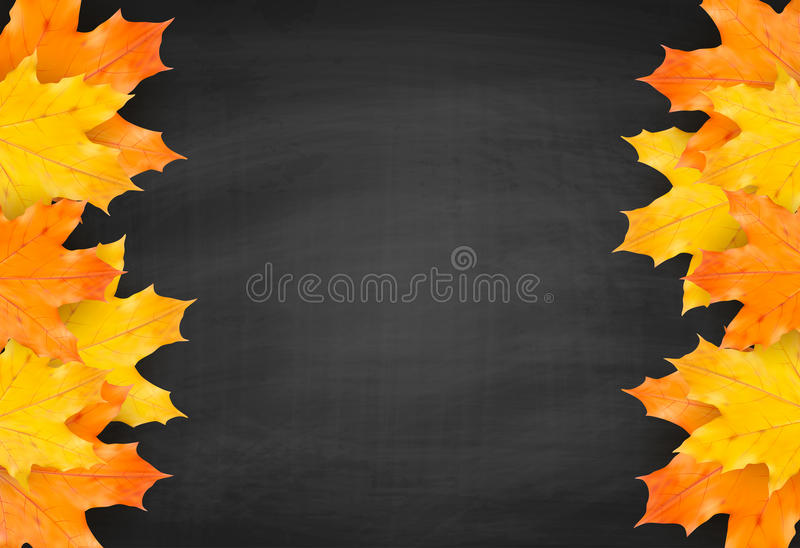 Autumn blackboard background with realistic maple leaves stock illustration
