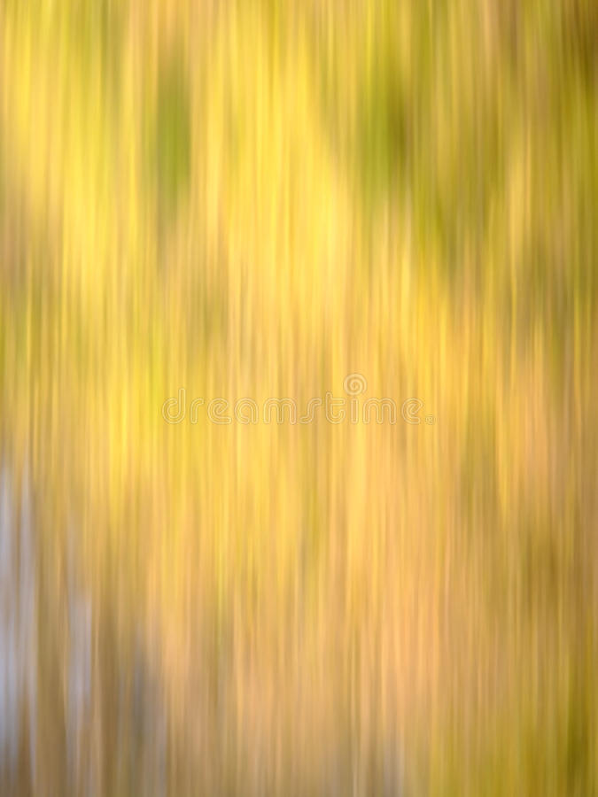 Autumn Blur - Yellows, with hints of Brown, Red & Green royalty free stock image