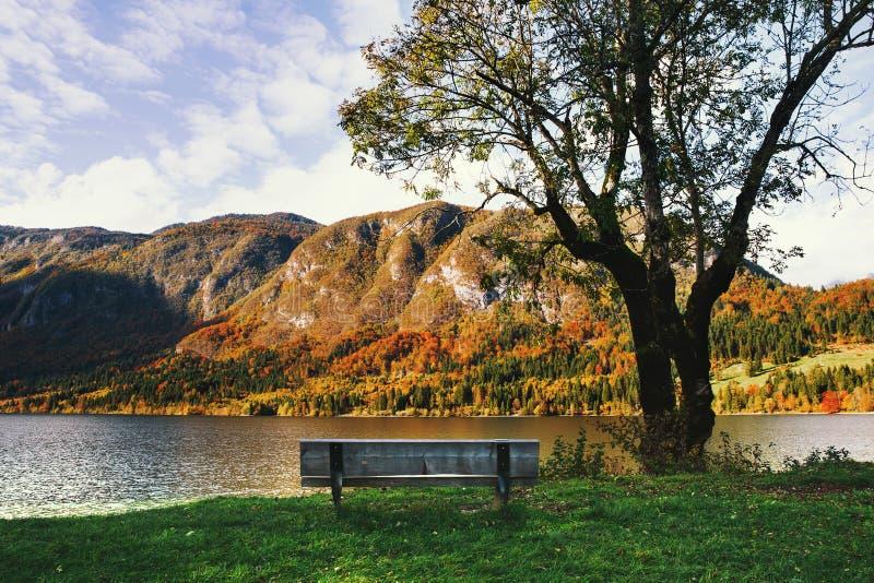 Autumn Bohinj Lake, Slowenien, Europa lizenzfreie stockfotos
