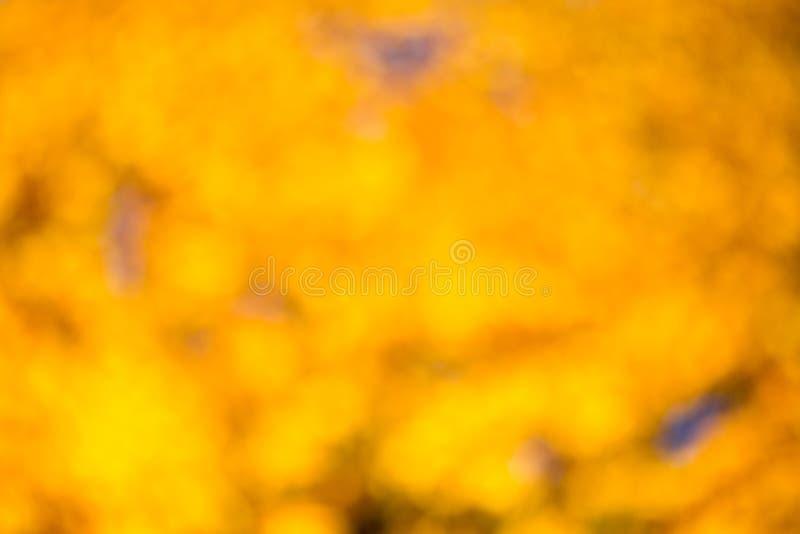 Autumn bokeh. royalty free stock photo