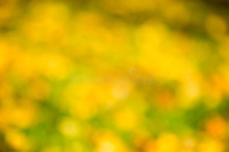 Autumn bokeh. royalty free stock image