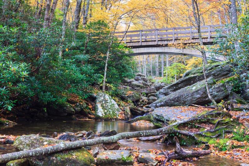 Autumn Boone Fork Creek North Carolina imagem de stock royalty free