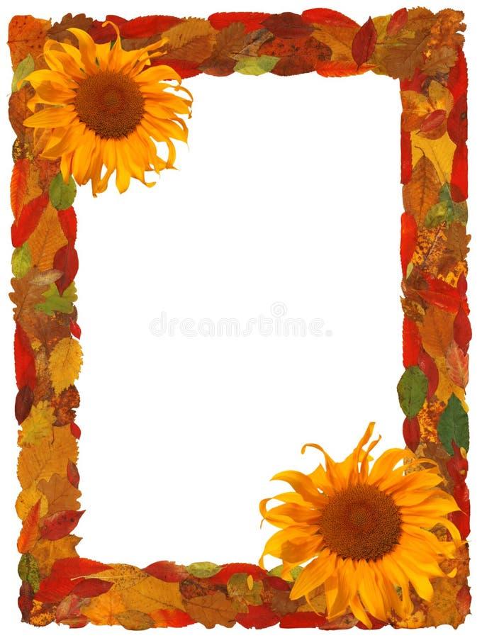 Free Autumn Border Royalty Free Stock Images - 6251229