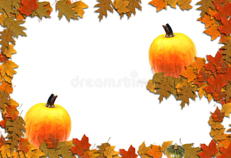 Autumn Border Seasonal Background. An autumn themed bordered background with many uses royalty free illustration