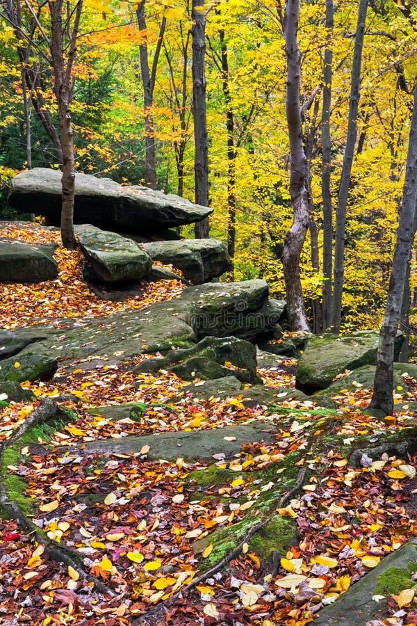 Autumn Boulders photographie stock libre de droits