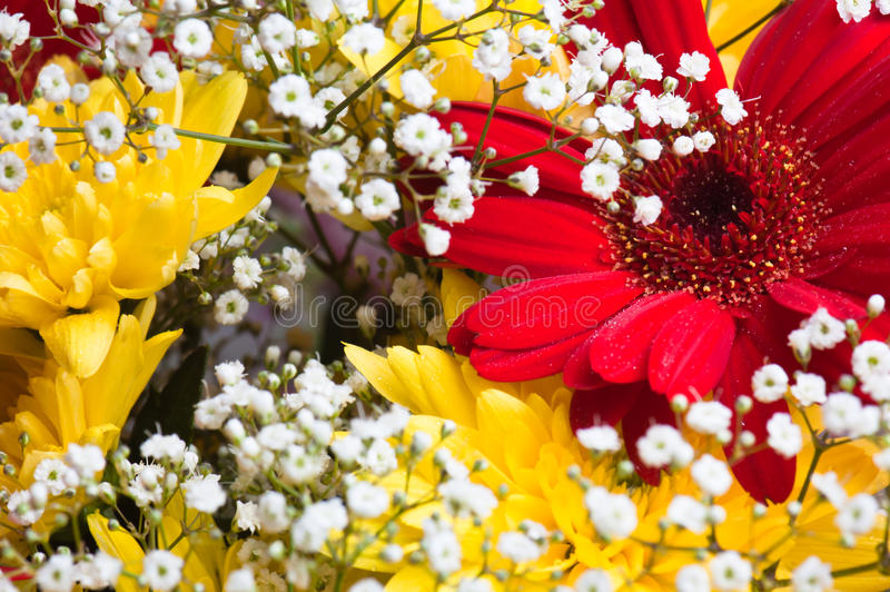 Download Autumn bouquet of flowers stock photo. Image of border - 16984242