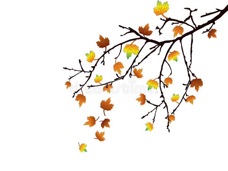 Autumn branch royalty free illustration