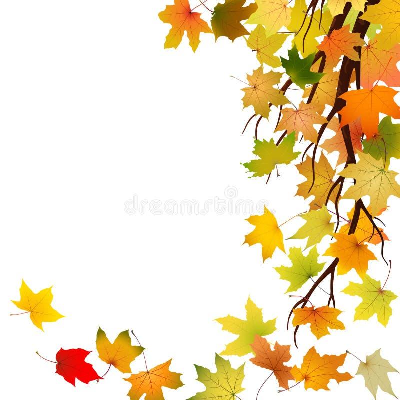 Autumn Branch lizenzfreie abbildung