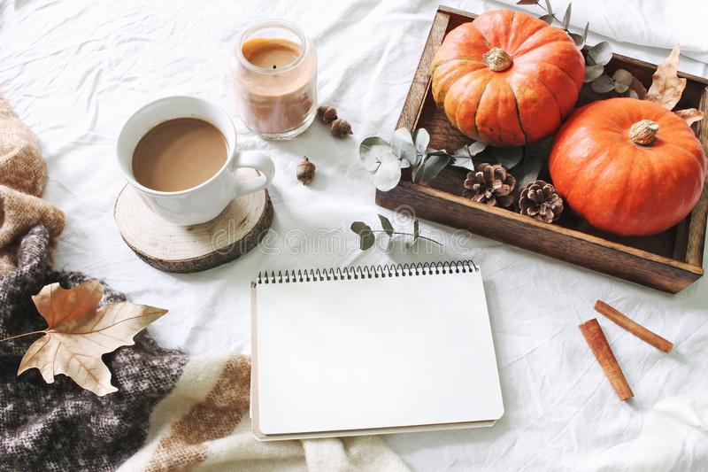 Autumn breakfast in bed composition. Blank calendar, notebook mockup. Cup of coffee, eucalyptus leaves and pumpkins on stock photography