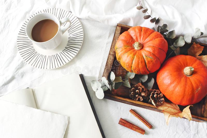 Autumn breakfast in bed composition. Blank card, notebook mockup. Cup of coffee., eucalyptus leaves and pumpkins on royalty free stock image