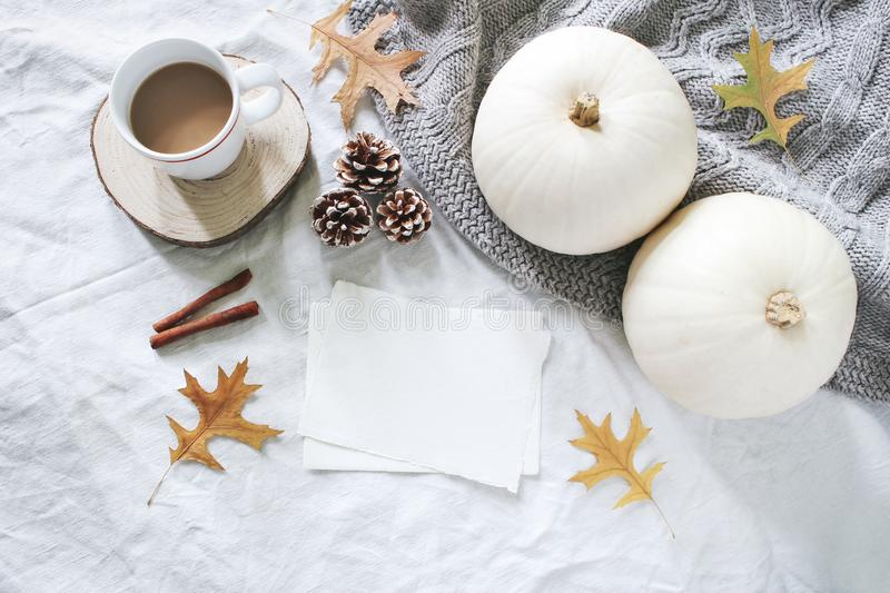 Autumn breakfast in bed composition. Blank cards mockup. Cup of coffee, white pumpkins, sweater, oak leaves and pine stock images