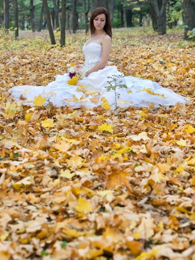Autumn bride stock photography