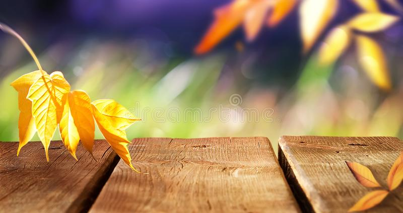 Autumn bright multicolored natural background. Yellow autumn leaves and the surface of a wooden table in the autumn forest. stock photos