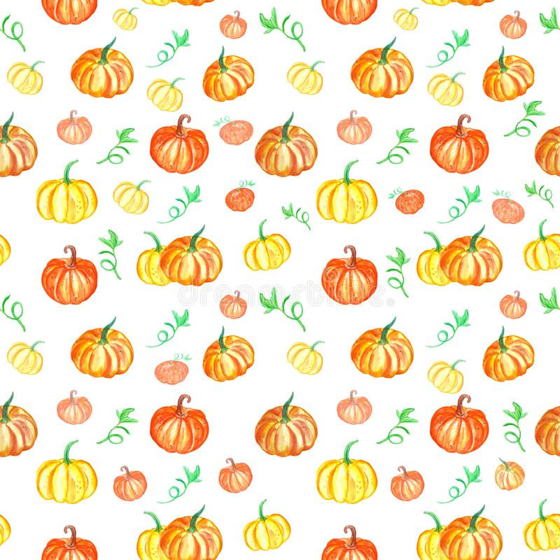 Hand drawn Autumn bright seamless pattern with pumpkins. royalty free illustration