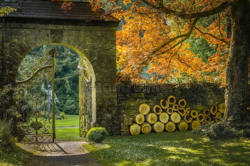 Autumn Impression royalty free stock photos