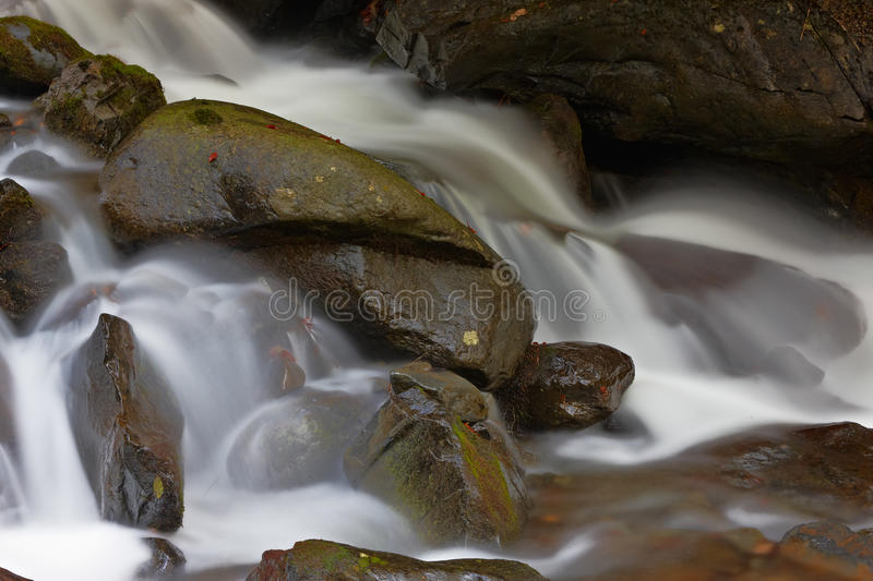 Autumn Brook Stock Photography