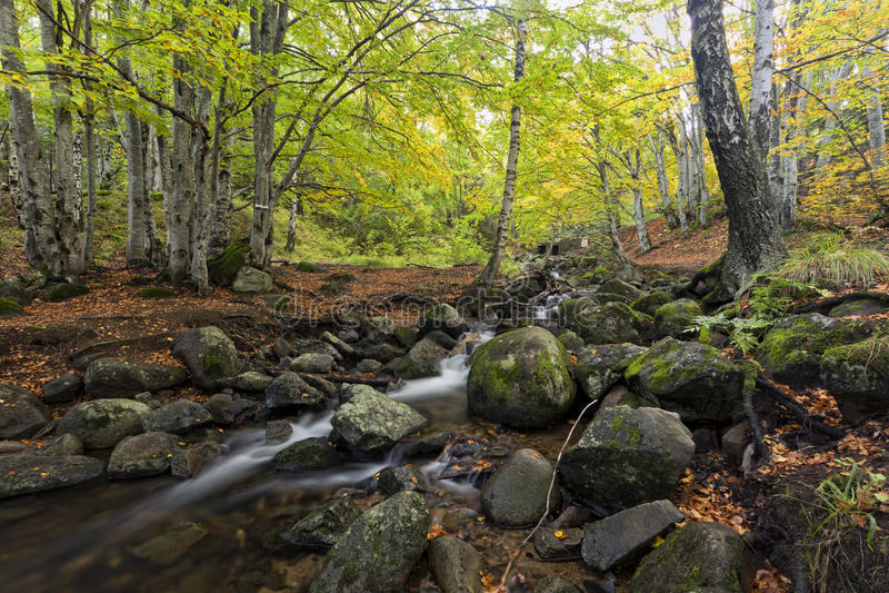 Autumn in Bulgaria - September royalty free stock photo
