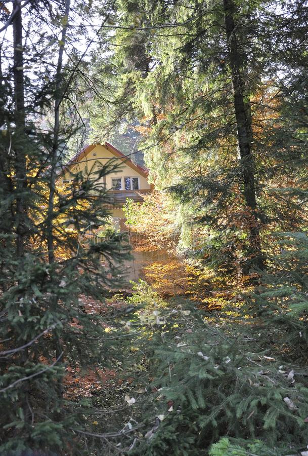 Autumn Cabin in the woods stock photography