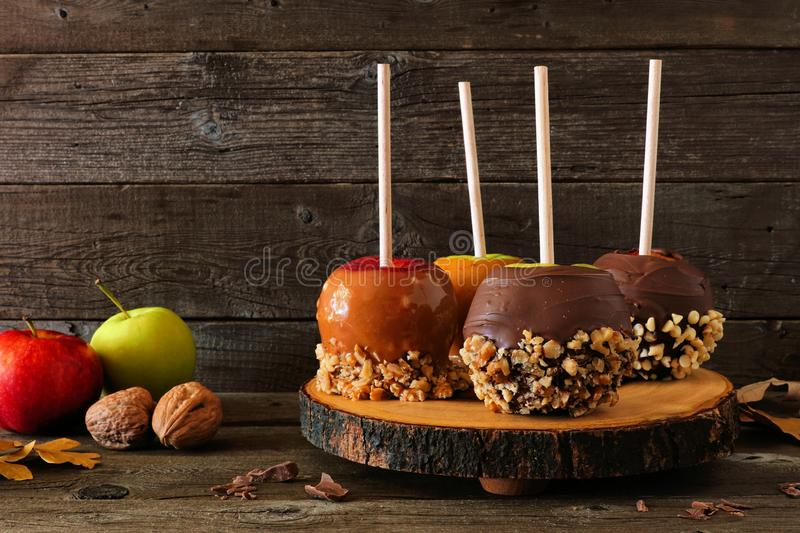 Autumn candy apples with chocolate and caramel, side view on a wood platter stock photography