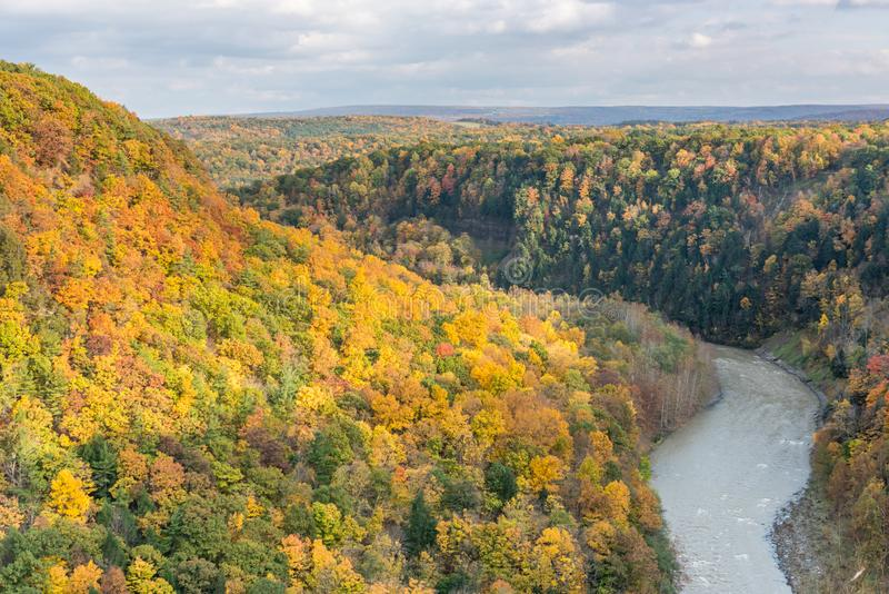 Autumn Canyon Colors Above the Genesee River royalty free stock photography
