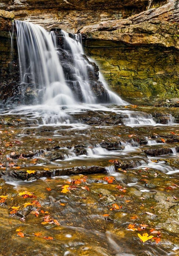 Autumn Canyon Falls stock fotografie