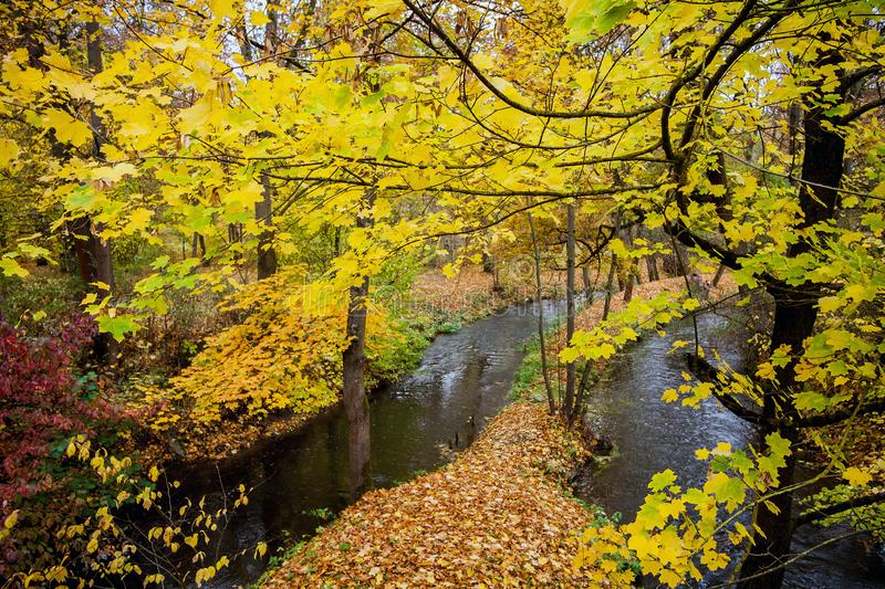 Autumn in the castle park of Meiningen Thuringia. Germany royalty free stock photos