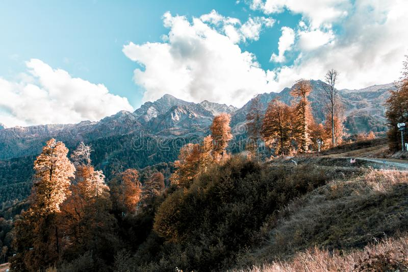Autumn in the Caucasus mountains. Turquoise and orange. beautiful weather. autumn forest. still life of foliage. leaf litter. dreams and reflections.  heaven stock photo