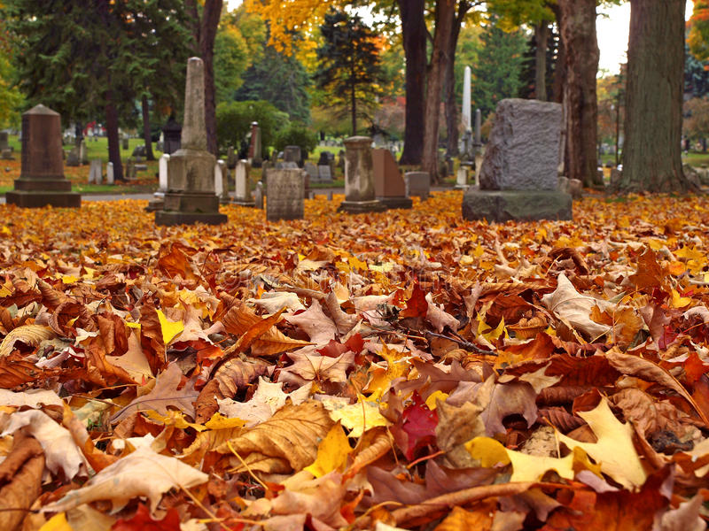 Download Autumn cemetery stock photo. Image of leaves, faith, peace - 15958486