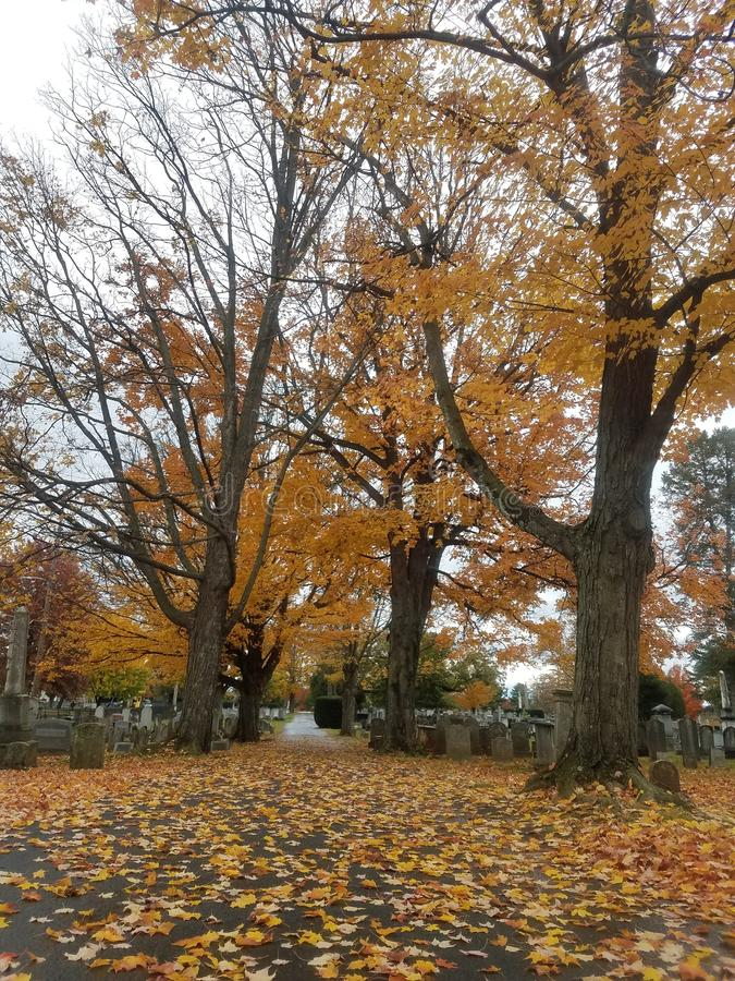 Autumn in cemetery royalty free stock photography
