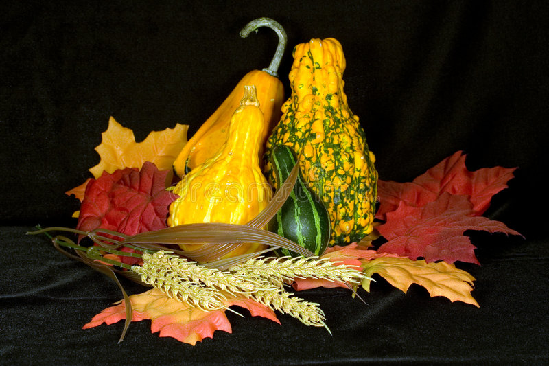 Autumn Centerpiece II. Centerpiece of autumn items on background of black micro velvet royalty free stock images