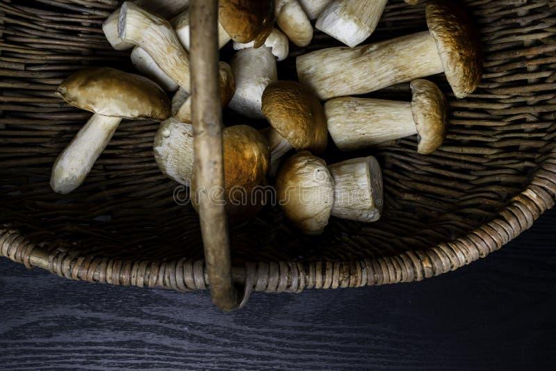 Autumn Cep Mushrooms Mand met porcinipaddestoelen op de houten achtergrond Close-up op houten rustieke lijst Heerlijk koken of royalty-vrije stock afbeeldingen