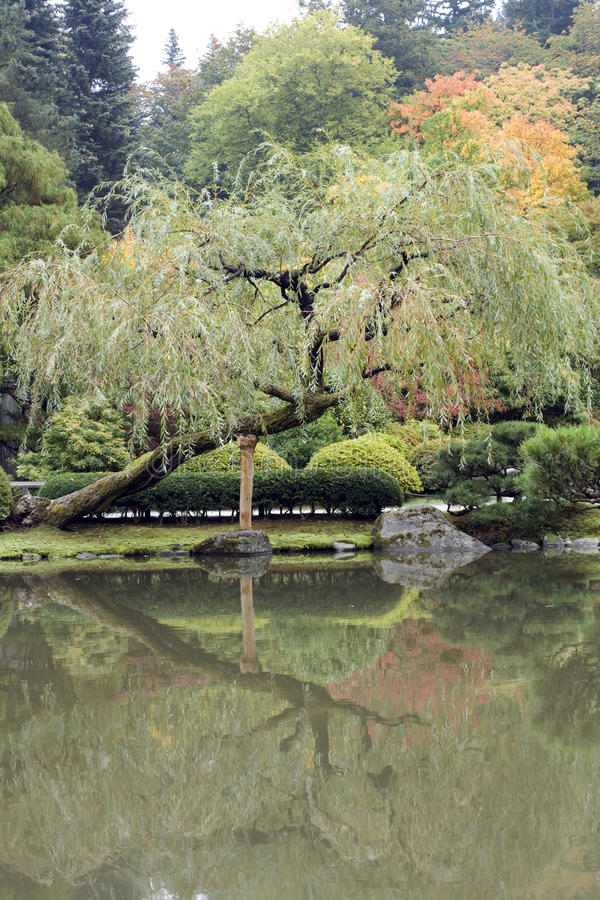 Download Autumn Charm In Japanese Garden Stock Image - Image: 27058893