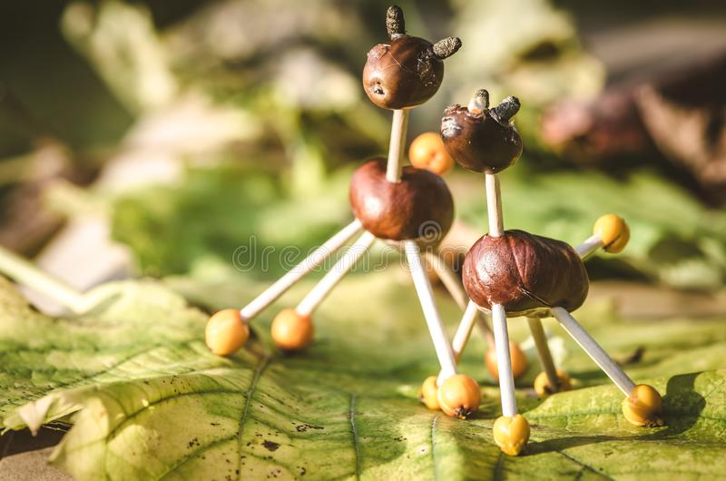 Autumn chestnut creative funny figures stock photography