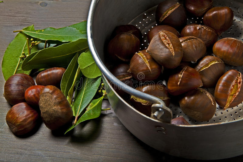 Download Autumn chestnuts stock image. Image of autumnal, season - 27670361