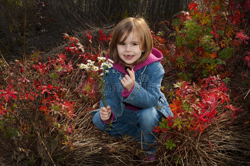 Autumn child stock images