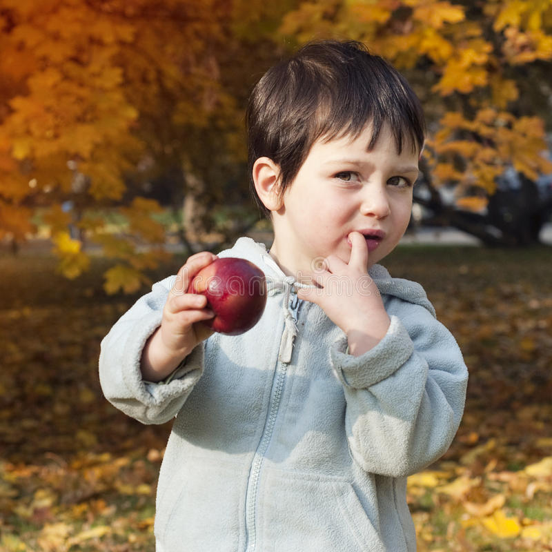 Autumn child with apple. A little child boy eating a red apple under trees in an autumn or fall garden or a park stock photo