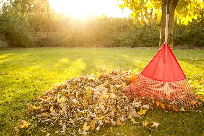 Autumn Chores fotografia de stock
