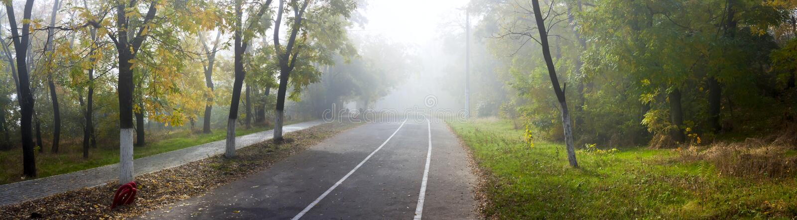 Autumn city park, alley, jogging and cycling tracks. Panorama banner stock image