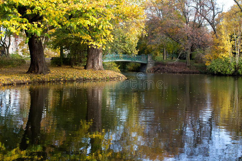 Download Autumn in the city park stock photo. Image of blue, flora - 34875794