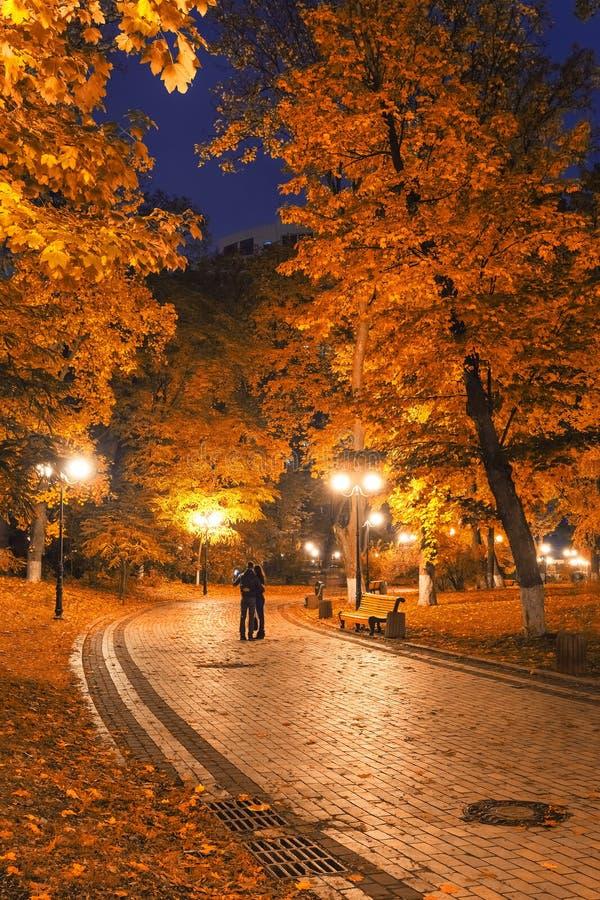 Autumn city park at night. Beautiful autumn city park at night royalty free stock photo