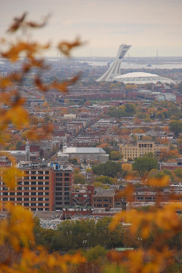 Autumn with City View