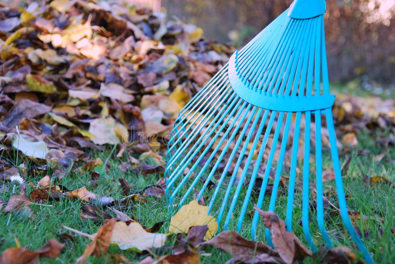 Autumn cleaning royalty free stock photography