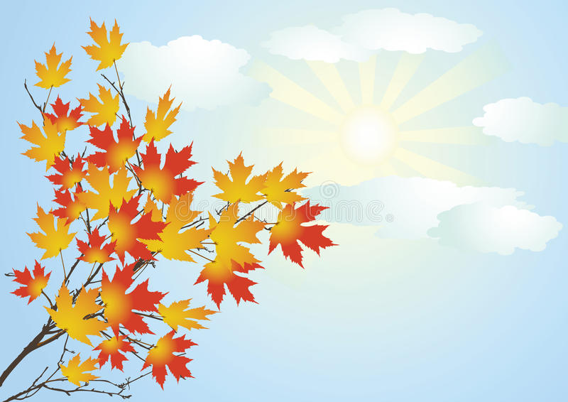 Autumn clear day. vector illustration