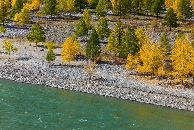 Autumn coast stock image