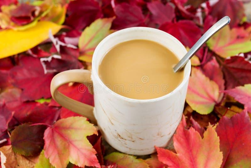 Autumn Coffee lizenzfreies stockbild