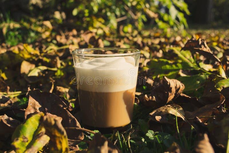 Autumn Coffee stock foto's