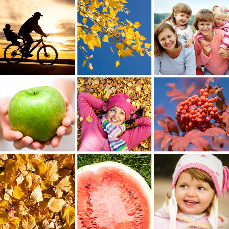Autumn collage. Conceptual collage of pictures on the bright autumn theme royalty free stock image