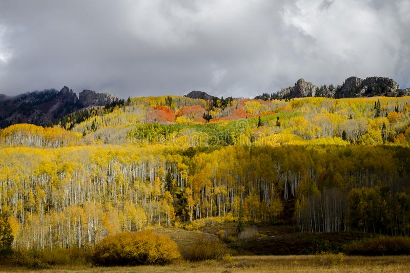 Autumn Color à San Juan et Rocky Mountains du Colorado images libres de droits