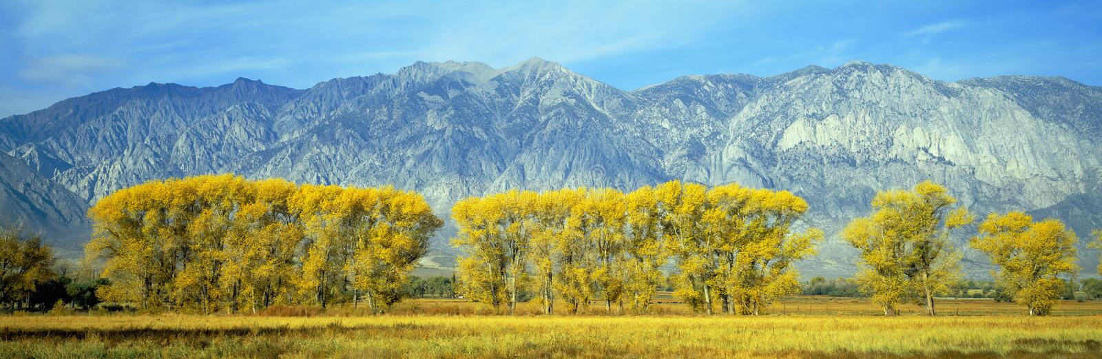 Download Autumn Color Along Highway 395, Royalty Free Stock Photography - Image: 23170987